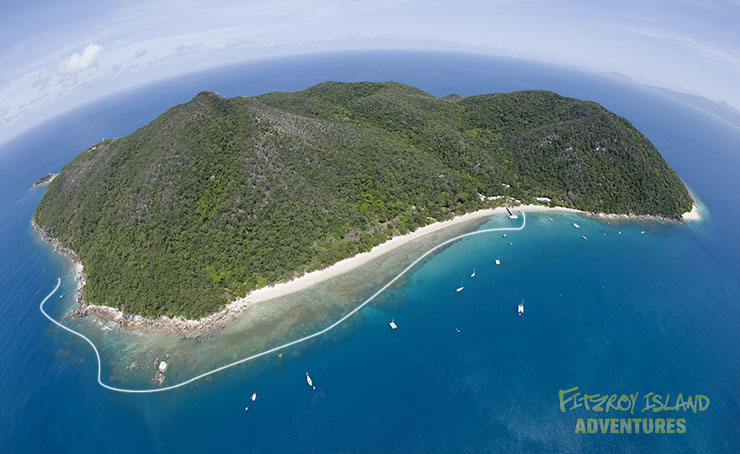 Half Day Great Barrier Reef Cruises to Fitzroy Island