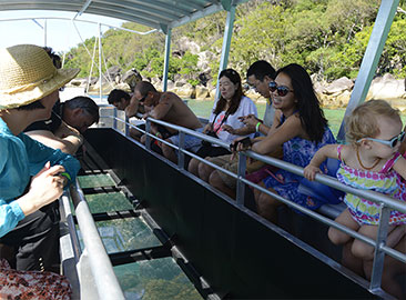 Great Barrier Reef Cruise Discounts With Glass Bottom Boat