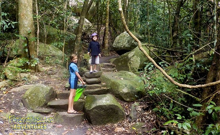Cairns rainforest walk on Fitzroy Island