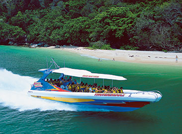 Half Day Great Barrier Reef Islands Trip