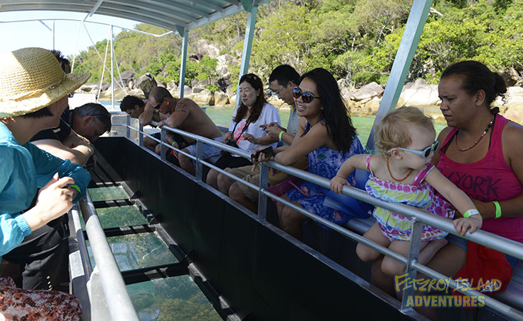 Family Great Barrier Reef Holidays with Glass Bottom Boat