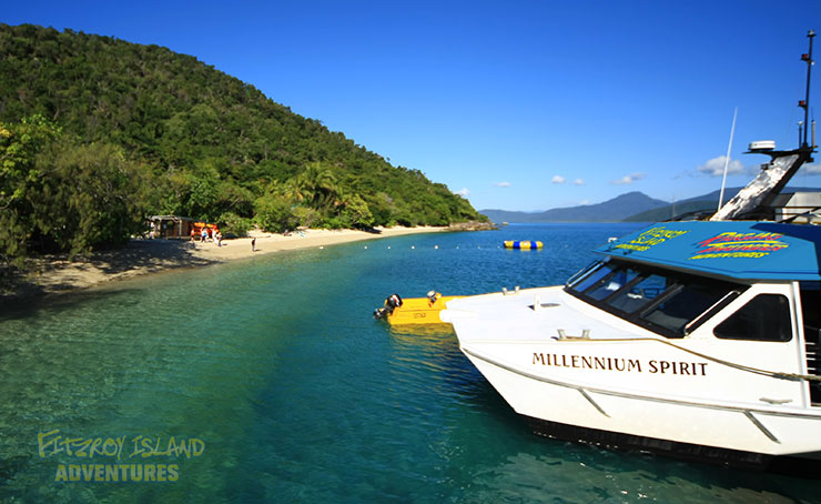 Fast Catamaran Great Barrier Reef Island Tours