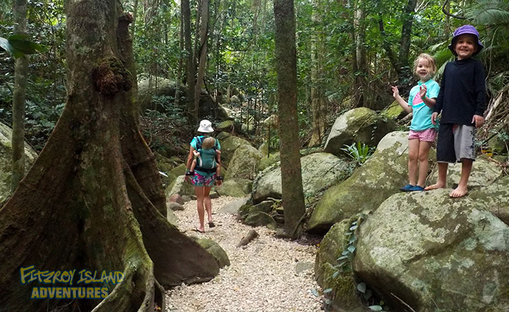 Full Day Great Barrier Reef Tours with Rainforest Walks
