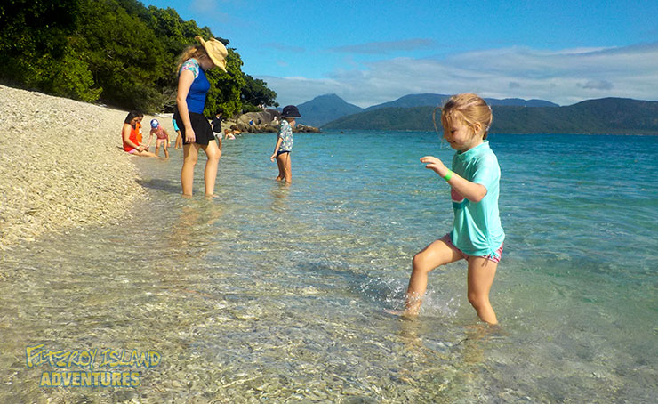 Swim Off The Beach With Our Full Day Great Barrier Reef Tours