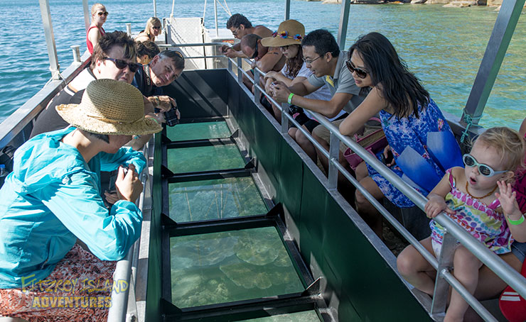 Cairns Great Barrier Reef Islands Glass Bottom Boat